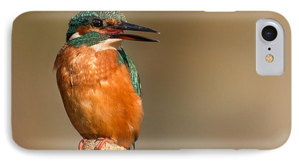 Kingfisher iPhone 7 Case -   Kingfisher by Ian Hufton