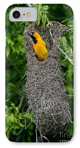 Altamira Oriole IPhone 7 Case