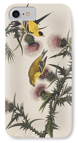 American Goldfinch IPhone 7 Case by John James Audubon