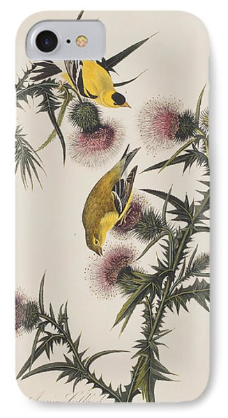 American Goldfinch IPhone 7 Case by John James Audubon