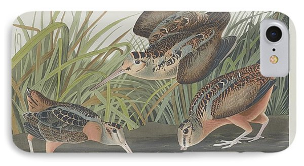 American Woodcock IPhone 7 Case