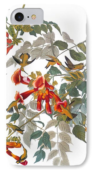Audubon: Hummingbird Phone Case by Granger