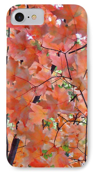 Autumn Foliage 1 IPhone Case by Lanjee Chee