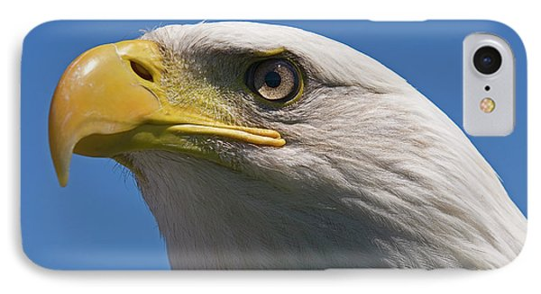 IPhone Case featuring the photograph Bald Eagle by JT Lewis