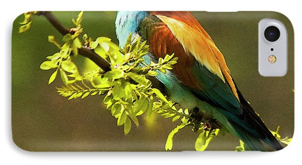 Bee Eater IPhone Case
