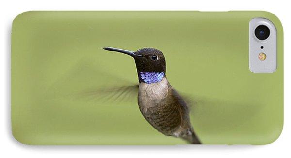 Black-chinned Hummingbird Phone Case by Doug Herr