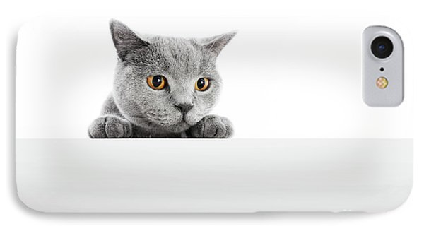British Shorthair Cat Isolated On White. Hunting IPhone Case