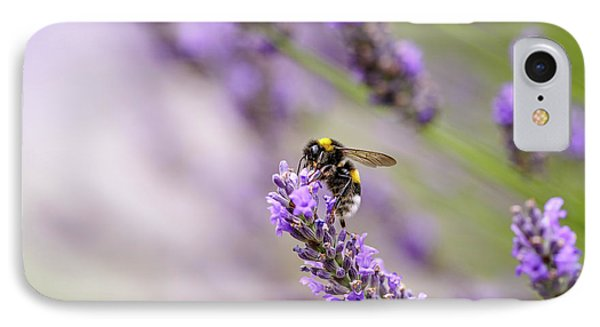 Bumblebee And Lavender IPhone Case by Nailia Schwarz