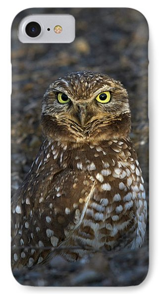 Burrowing Owl Phone Case by Doug Herr
