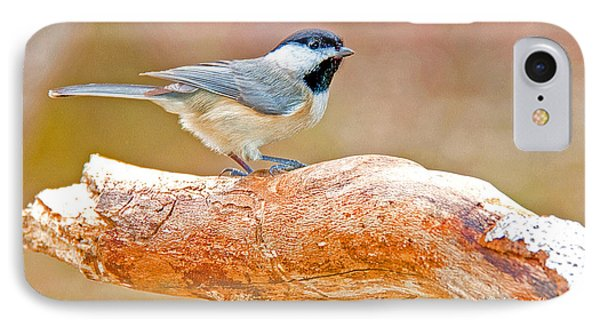IPhone Case featuring the photograph Carolina Chickadee On Tree Limb by A Gurmankin