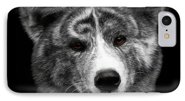 Closeup Portrait Of Akita Inu Dog On Isolated Black Background IPhone 7 Case