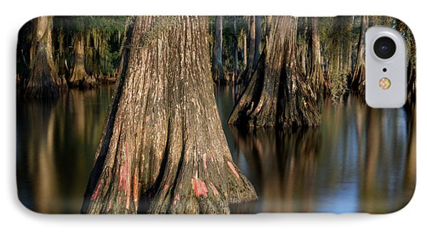 IPhone Case featuring the photograph Cypress Trees by Evgeny Vasenev