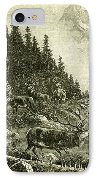 Deer IPhone Case by Austrian School