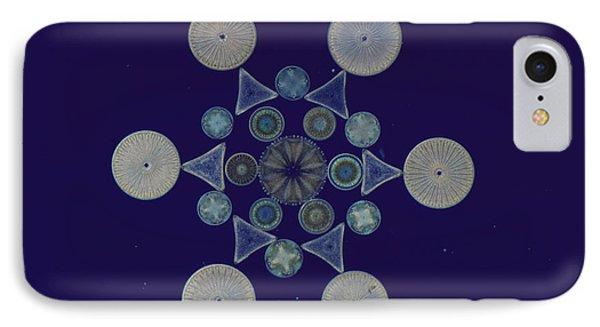 Diatom Arrangement Phone Case by M. I. Walker