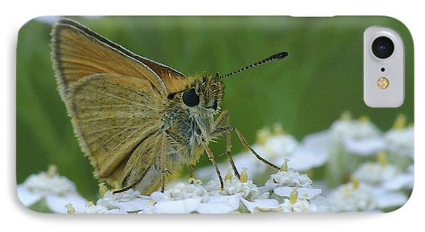 Dion Skipper Yarrow Blossoms Phone Case by Michael Peychich