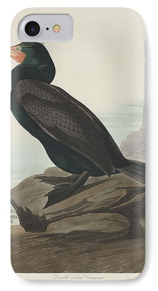 Double-crested Cormorant IPhone Case by Dreyer Wildlife Print Collections