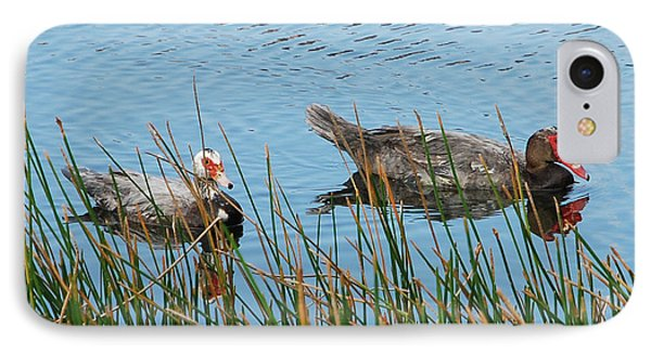 IPhone Case featuring the photograph 2- Ducks by Joseph Keane