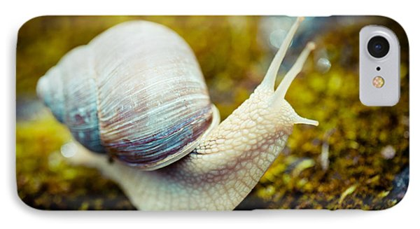 snail Escargot artmif.lv IPhone Case by Raimond Klavins