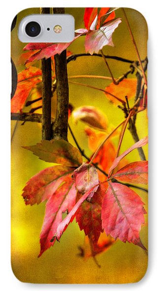 IPhone Case featuring the photograph Fall Colors by Eduard Moldoveanu