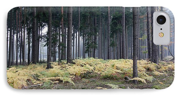 Fog In The Forest With Ferns IPhone Case by Michal Boubin