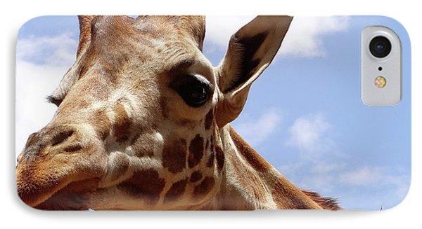 Giraffe Getting Personal 6 IPhone Case