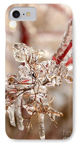 Icy Branches IPhone Case by JT Lewis