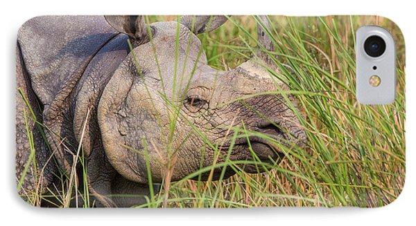 Indian Rhinoceros, India IPhone Case by B. G. Thomson
