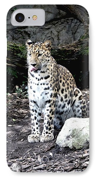 IPhone Case featuring the photograph Leopard by Janice Spivey