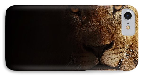 IPhone Case featuring the photograph Lion by Christine Sponchia
