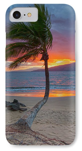 Lonely Palm IPhone Case by James Roemmling
