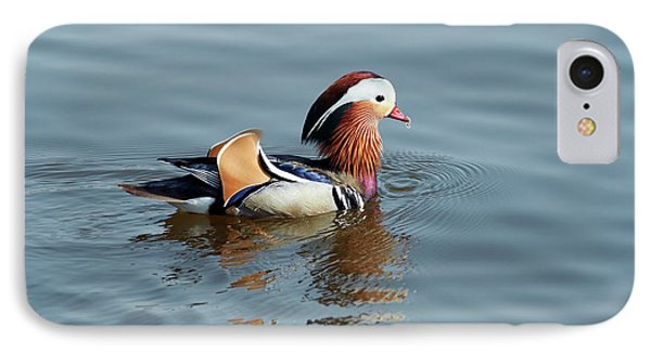 IPhone Case featuring the photograph Mandarin Duck by Michal Boubin