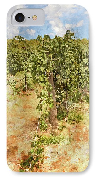 Napa Vineyard In The Spring IPhone Case