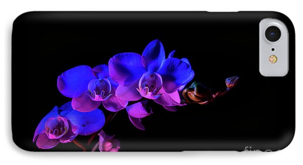IPhone Case featuring the photograph Orchid by Brian Jones