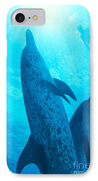Pair Of Spotted Dolphins Phone Case by Ed Robinson - Printscapes