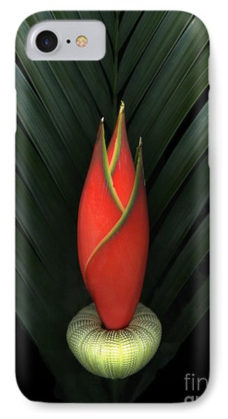Palm Of Fire IPhone Case by Christian Slanec