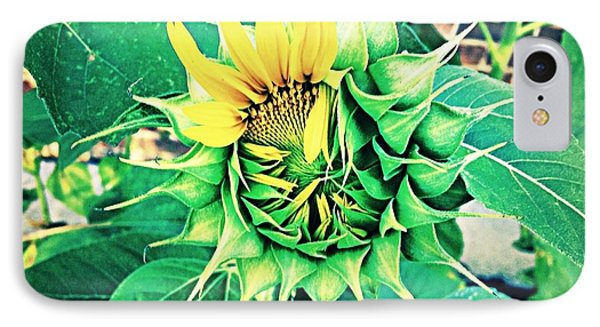 IPhone Case featuring the photograph Peeping Sunflower by Angela Annas