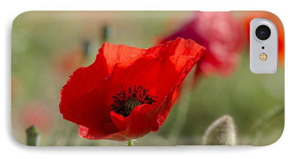 Poppies In Field In Spring IPhone Case by Perry Van Munster