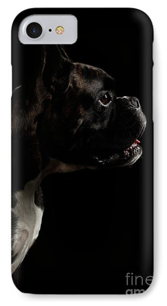 Purebred Boxer Dog Isolated On Black Background IPhone Case by Sergey Taran