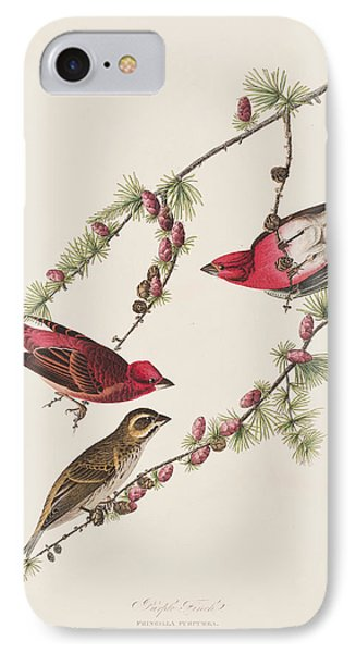 Purple Finch IPhone 7 Case by John James Audubon