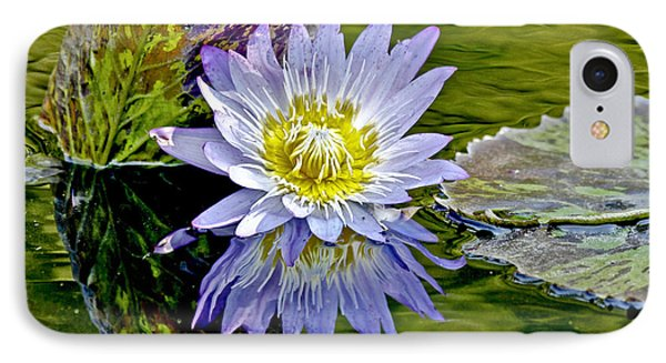 Purple Water Lily Pond IPhone Case by Carol F Austin