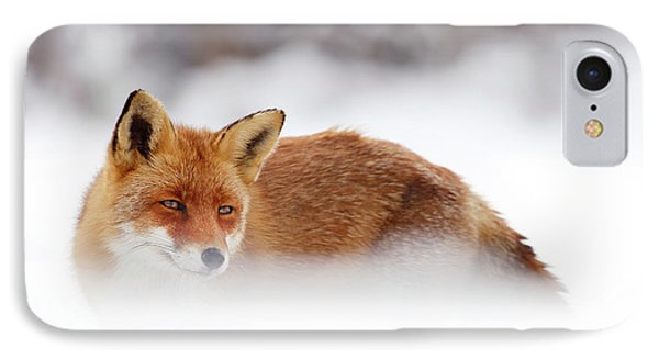 Red Fox In The Snow IPhone Case by Roeselien Raimond