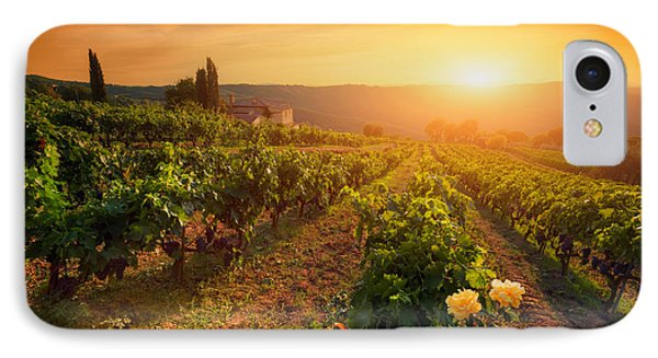 Ripe Wine Grapes On Vines In Tuscany, Italy IPhone Case by Michal Bednarek