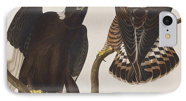 Rough-legged Falcon IPhone Case by John James Audubon