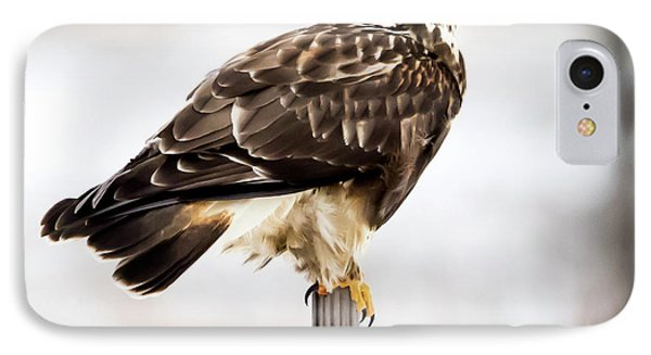 IPhone Case featuring the photograph Rough-legged Hawk by Ricky L Jones