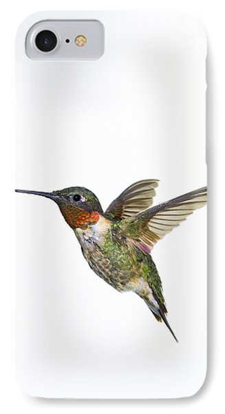 Ruby-throated Hummingbird Archilochus IPhone Case by Thomas Kitchin & Victoria Hurst