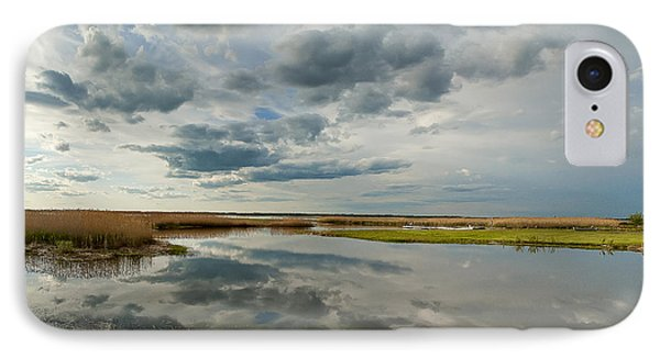 Salt Water Marsh IPhone Case by Rick Mosher