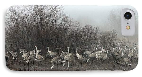 Sandhill Cranes And The Fog IPhone Case by Farol Tomson