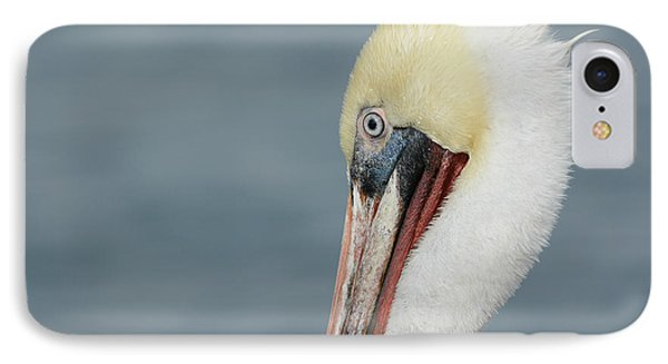 IPhone Case featuring the photograph Simplicity by Fraida Gutovich