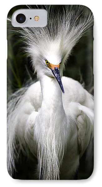 Snowy Egret IPhone Case by Fran Gallogly