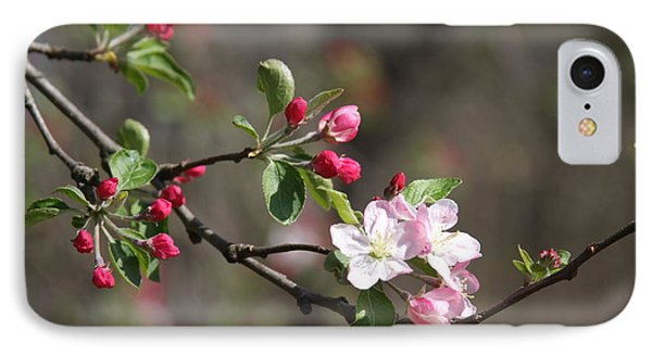 IPhone Case featuring the photograph Blossom And Hope by Vadim Levin